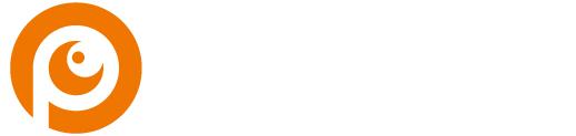Project-Vision-Logo-white-24